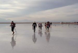 Atacama Desert 2013