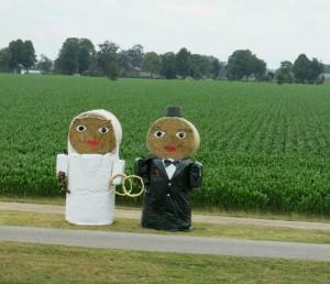 Farmer's wedding